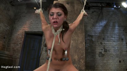 Photo number 4 from Cassandra Nix Live Show Part 3 shot for Hogtied on Kink.com. Featuring Cassandra Nix and Isis Love in hardcore BDSM & Fetish porn.
