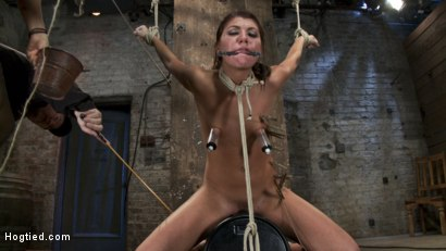 Photo number 8 from Cassandra Nix Live Show Part 3 shot for Hogtied on Kink.com. Featuring Cassandra Nix and Isis Love in hardcore BDSM & Fetish porn.