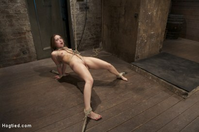 Photo number 13 from Cute girl next door, bound, face fucked, made to cum over & over, brutal bondage and pussy torment! shot for Hogtied on Kink.com. Featuring Remy LaCroix in hardcore BDSM & Fetish porn.