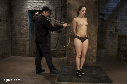 Photo number 3 from Cute girl next door, bound, face fucked, made to cum over & over, brutal bondage and pussy torment! shot for Hogtied on Kink.com. Featuring Remy LaCroix in hardcore BDSM & Fetish porn.