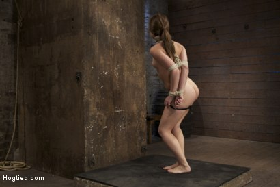 Photo number 4 from Cute girl next door, bound, face fucked, made to cum over & over, brutal bondage and pussy torture! shot for Hogtied on Kink.com. Featuring Remy LaCroix in hardcore BDSM & Fetish porn.