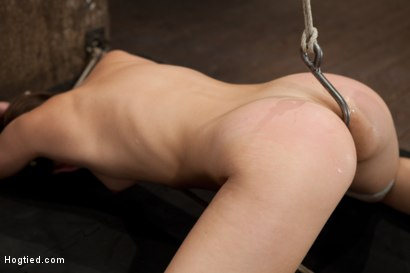 Photo number 8 from Remy - Controlled by her Cunt shot for Hogtied on Kink.com. Featuring Remy LaCroix in hardcore BDSM & Fetish porn.