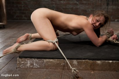 Photo number 6 from Remy - Controlled by her Cunt shot for Hogtied on Kink.com. Featuring Remy LaCroix in hardcore BDSM & Fetish porn.