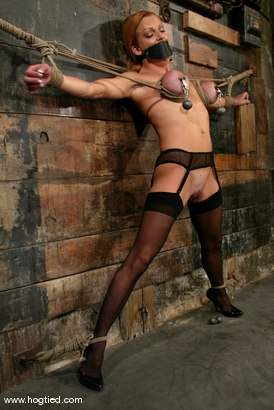 Photo number 6 from Shannon Kelly shot for Hogtied on Kink.com. Featuring Shannon Kelly in hardcore BDSM & Fetish porn.