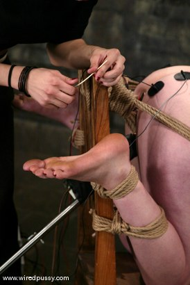 Photo number 3 from Lorelei Lee shot for Wired Pussy on Kink.com. Featuring Lorelei Lee in hardcore BDSM & Fetish porn.