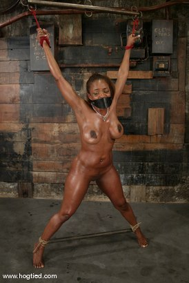 Photo number 9 from Sinnamon Love shot for Hogtied on Kink.com. Featuring Sinnamon Love in hardcore BDSM & Fetish porn.