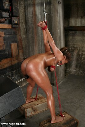 Photo number 4 from Sinnamon Love shot for Hogtied on Kink.com. Featuring Sinnamon Love in hardcore BDSM & Fetish porn.