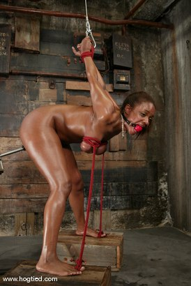 Photo number 5 from Sinnamon Love shot for Hogtied on Kink.com. Featuring Sinnamon Love in hardcore BDSM & Fetish porn.