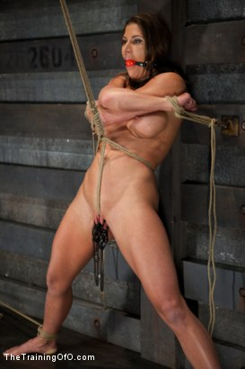 Photo number 13 from Training Ariel X - Extreme Endurance shot for The Training Of O on Kink.com. Featuring Ariel X in hardcore BDSM & Fetish porn.