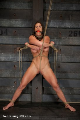 Photo number 6 from Training Ariel X - Extreme Endurance shot for The Training Of O on Kink.com. Featuring Ariel X in hardcore BDSM & Fetish porn.