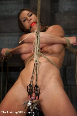 Photo number 4 from Training Ariel X - Extreme Endurance shot for The Training Of O on Kink.com. Featuring Ariel X in hardcore BDSM & Fetish porn.