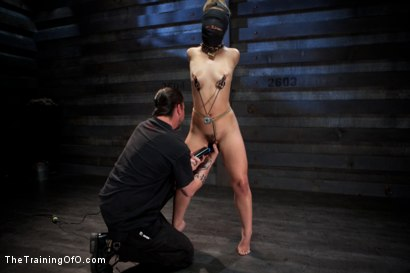 Photo number 10 from 50 Shades of...<br>Slave Training of Kristina Rose shot for The Training Of O on Kink.com. Featuring Kristina Rose, Naidyne, Coral Aorta and Ruby Song in hardcore BDSM & Fetish porn.