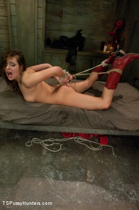 Photo number 15 from Stiff Competition: Ts Tiffany Star Fucks the Living Cow Girl Hell out of A Hot Southern Girl shot for TS Pussy Hunters on Kink.com. Featuring Tiffany Starr and Ashlynn Leigh in hardcore BDSM & Fetish porn.