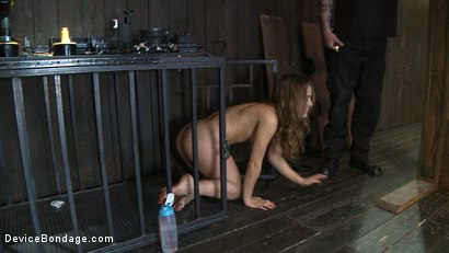 Photo number 12 from Kristina Rose - Filthy Whore - Live Show Part 2 shot for Device Bondage on Kink.com. Featuring Kristina Rose and Isis Love in hardcore BDSM & Fetish porn.
