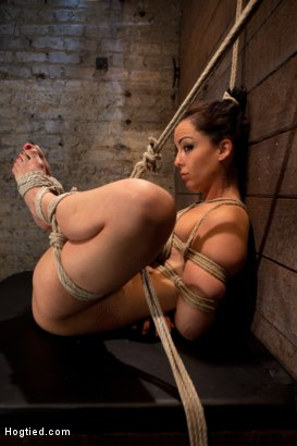 Photo number 12 from Hot Young Bryn Blayne Bound and Fucked in Every Hole shot for Hogtied on Kink.com. Featuring Bryn Blayne in hardcore BDSM & Fetish porn.