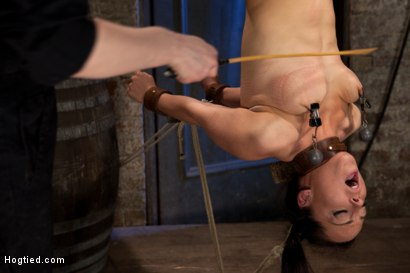 Photo number 6 from Hot Young Bryn Blayne Bound and Fucked in Every Hole shot for Hogtied on Kink.com. Featuring Bryn Blayne in hardcore BDSM & Fetish porn.