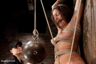Photo number 6 from Missy Minks Ripened and Violated shot for Hogtied on Kink.com. Featuring Missy Minks in hardcore BDSM & Fetish porn.