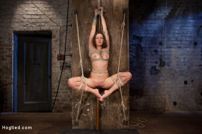 Photo number 8 from Missy Minks Ripened and Violated shot for Hogtied on Kink.com. Featuring Missy Minks in hardcore BDSM & Fetish porn.