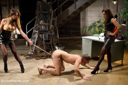 Photo number 3 from New Meat, New Challenges, Divine Satisfaction shot for Divine Bitches on Kink.com. Featuring Francesca Le , Felony and Brian Bonds in hardcore BDSM & Fetish porn.