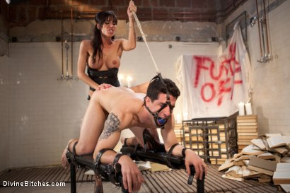 Photo number 6 from Better Luck Next Time shot for Divine Bitches on Kink.com. Featuring Tyler Alexander and Gia DiMarco in hardcore BDSM & Fetish porn.