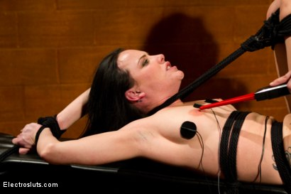 Photo number 4 from Tickle Fuck shot for Electro Sluts on Kink.com. Featuring Katie St. Ives and Bobbi Starr in hardcore BDSM & Fetish porn.
