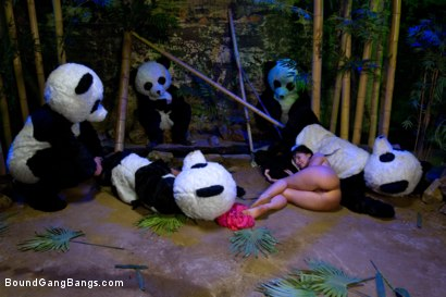 Photo number 14 from PANDAMONIUM!!! PANDA LULLABY!!! PANDA PORNO!!!!! shot for Bound Gang Bangs on Kink.com. Featuring James Deen, Mickey Mod, Karlo Karrera, Ramon Nomar, Mark Davis and Ashli  Orion in hardcore BDSM & Fetish porn.