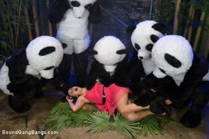 Photo number 1 from PANDAMONIUM!!! PANDA LULLABY!!! PANDA PORNO!!!!! shot for Bound Gang Bangs on Kink.com. Featuring James Deen, Mickey Mod, Karlo Karrera, Ramon Nomar, Mark Davis and Ashli  Orion in hardcore BDSM & Fetish porn.