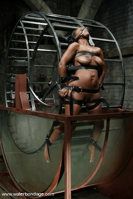 Photo number 4 from Sinnamon Love and Sgt. Major shot for Water Bondage on Kink.com. Featuring Sinnamon Love and Sgt. Major in hardcore BDSM & Fetish porn.