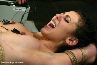 Photo number 13 from Princess Donna Dolore shot for Wired Pussy on Kink.com. Featuring Princess Donna Dolore in hardcore BDSM & Fetish porn.