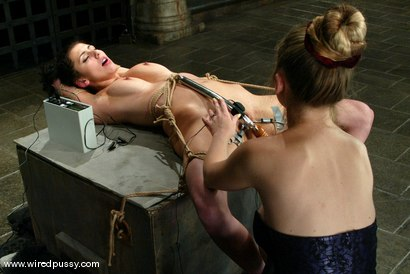 Photo number 10 from Princess Donna Dolore shot for Wired Pussy on Kink.com. Featuring Princess Donna Dolore in hardcore BDSM & Fetish porn.