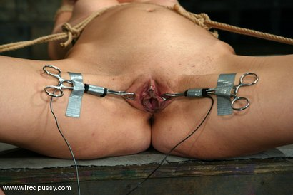 Photo number 14 from Princess Donna Dolore shot for Wired Pussy on Kink.com. Featuring Princess Donna Dolore in hardcore BDSM & Fetish porn.