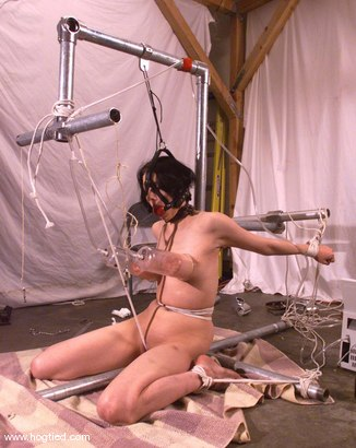 Photo number 4 from Lily shot for Hogtied on Kink.com. Featuring Lily in hardcore BDSM & Fetish porn.