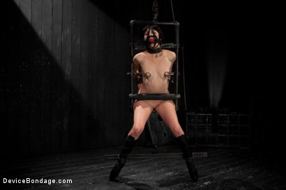 Photo number 14 from Coral Aorta gets caned shot for Device Bondage on Kink.com. Featuring Coral Aorta in hardcore BDSM & Fetish porn.