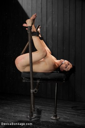 Photo number 10 from Coral Aorta gets caned shot for Device Bondage on Kink.com. Featuring Coral Aorta in hardcore BDSM & Fetish porn.