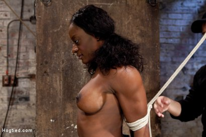 Photo number 8 from Amazing Fitness Enthusiast Kelli Provocateur Gets Sexually Dominated shot for Hogtied on Kink.com. Featuring Kelli Provocateur in hardcore BDSM & Fetish porn.