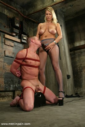 Photo number 10 from Xana Star and Plew shot for Men In Pain on Kink.com. Featuring Xana Star and Plew in hardcore BDSM & Fetish porn.