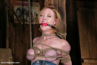 Photo number 1 from Darling shot for Hogtied on Kink.com. Featuring Dee Williams in hardcore BDSM & Fetish porn.