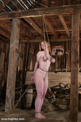 Photo number 4 from Darling shot for Hogtied on Kink.com. Featuring Dee Williams in hardcore BDSM & Fetish porn.
