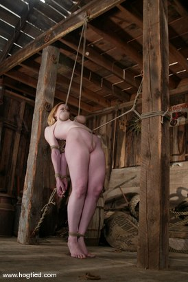 Photo number 6 from Darling shot for Hogtied on Kink.com. Featuring Dee Williams in hardcore BDSM & Fetish porn.