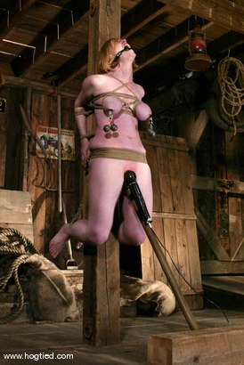 Photo number 12 from Darling shot for Hogtied on Kink.com. Featuring Dee Williams in hardcore BDSM & Fetish porn.