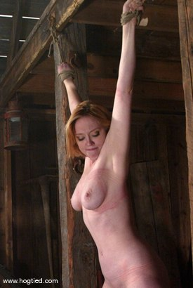 Photo number 15 from Darling shot for Hogtied on Kink.com. Featuring Dee Williams in hardcore BDSM & Fetish porn.