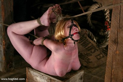Photo number 7 from Darling shot for Hogtied on Kink.com. Featuring Dee Williams in hardcore BDSM & Fetish porn.
