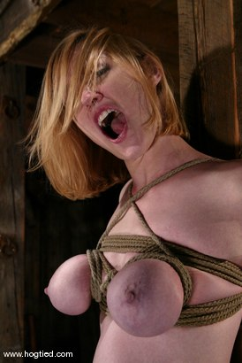 Photo number 11 from Darling shot for Hogtied on Kink.com. Featuring Dee Williams in hardcore BDSM & Fetish porn.