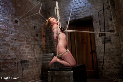 Photo number 9 from Marie McCray shot for Hogtied on Kink.com. Featuring Marie McCray in hardcore BDSM & Fetish porn.