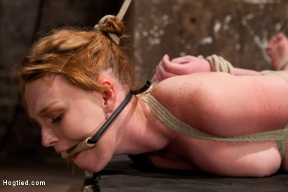 Photo number 12 from Marie McCray shot for Hogtied on Kink.com. Featuring Marie McCray in hardcore BDSM & Fetish porn.