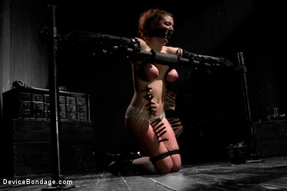 Photo number 4 from Iona Grace Punished Wanton Slut shot for Device Bondage on Kink.com. Featuring Iona Grace in hardcore BDSM & Fetish porn.