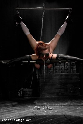 Photo number 5 from Iona Grace Punished Wanton Slut shot for Device Bondage on Kink.com. Featuring Iona Grace in hardcore BDSM & Fetish porn.