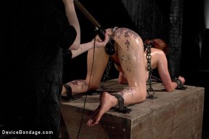 Photo number 8 from Iona Grace Punished Wanton Slut shot for Device Bondage on Kink.com. Featuring Iona Grace in hardcore BDSM & Fetish porn.