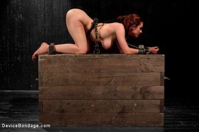 Photo number 6 from Iona Grace Punished Wanton Slut shot for Device Bondage on Kink.com. Featuring Iona Grace in hardcore BDSM & Fetish porn.