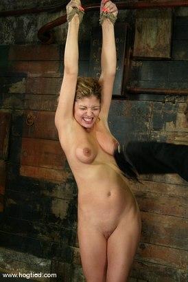 Photo number 7 from Brooke Bound shot for Hogtied on Kink.com. Featuring Brooke Bound in hardcore BDSM & Fetish porn.
